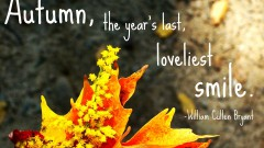 35321-Autumn-Quote